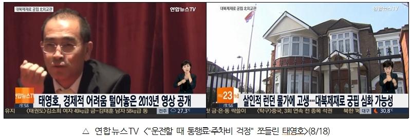 """연합뉴스TV <""""운전할 때 통행료 주차비 걱정"""" 쪼들린 태영호>(8/18)"""
