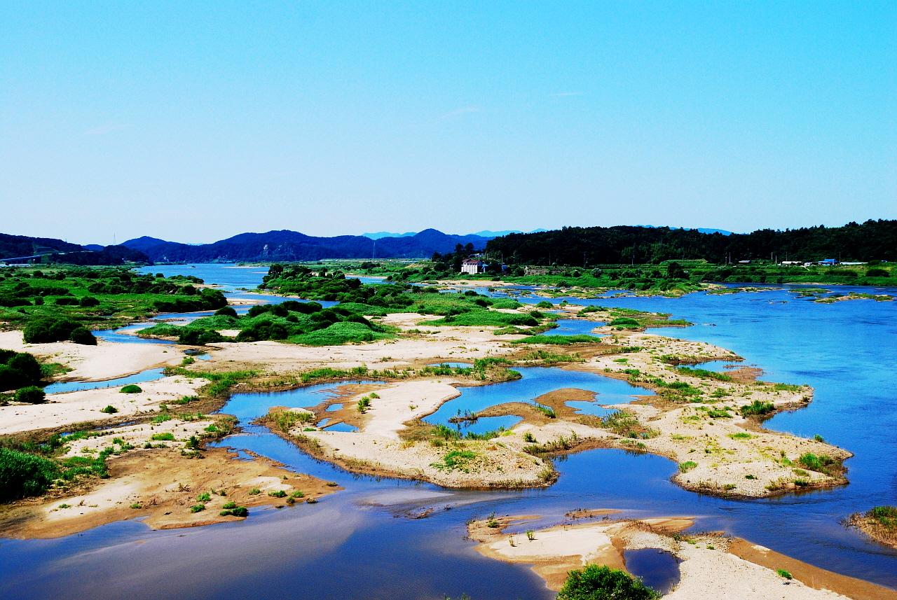 왕진교에서 본 금강의 모습이다.  4대강 공사 이전의 모습