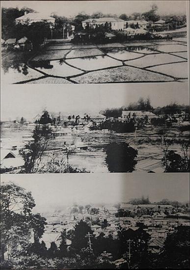 1890년대 와세다대학 주변은 논밭이었다.