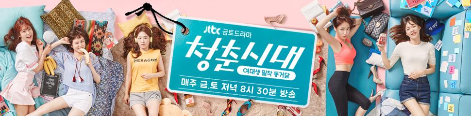 <청춘시대>의 포스터.