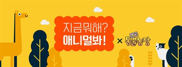 SBS < TV동물농장 > 캡쳐 화면