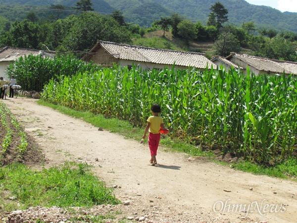 한 북한 아이가 걸어가고 있다.