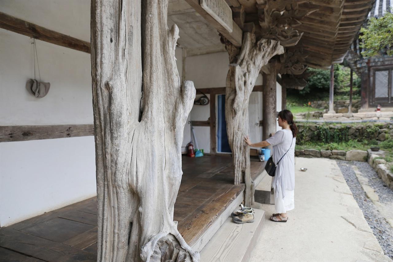 화엄사에 딸린 구층암의 모과나무 기둥. 임세웅 전남문화관광해설사가 화엄사를 제대로 여행하는 방법 가운데 하나가 이 구층암에서 차 한 잔 마시며 여유를 갖는 것이다.