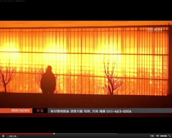 폴란드 보가티냐시의 비닐하우스에서 나오는 인공조명. ⓒ KNN 영상 갈무리