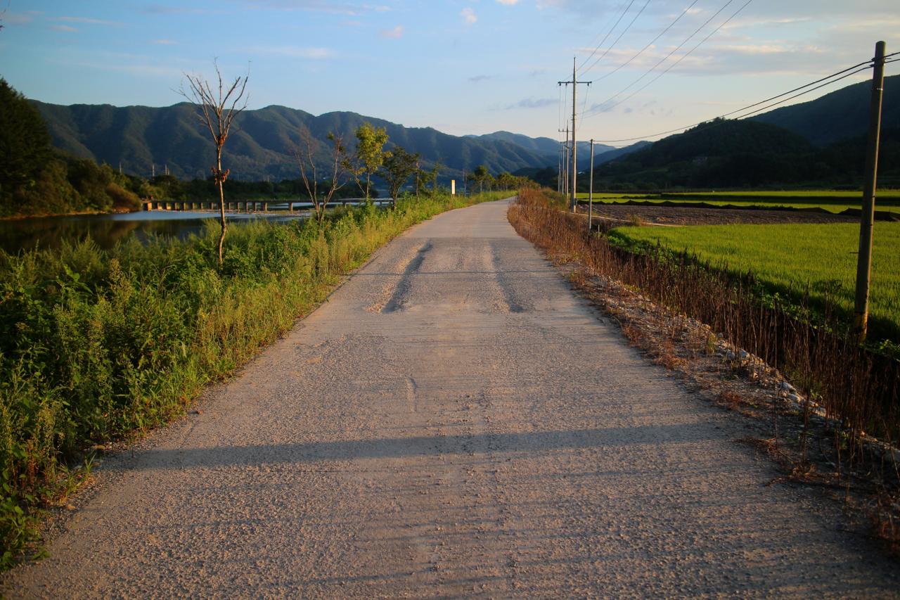 예쁘고 한적한 지촌리 오솔길. 우리가 걷고 싶은 길이다.