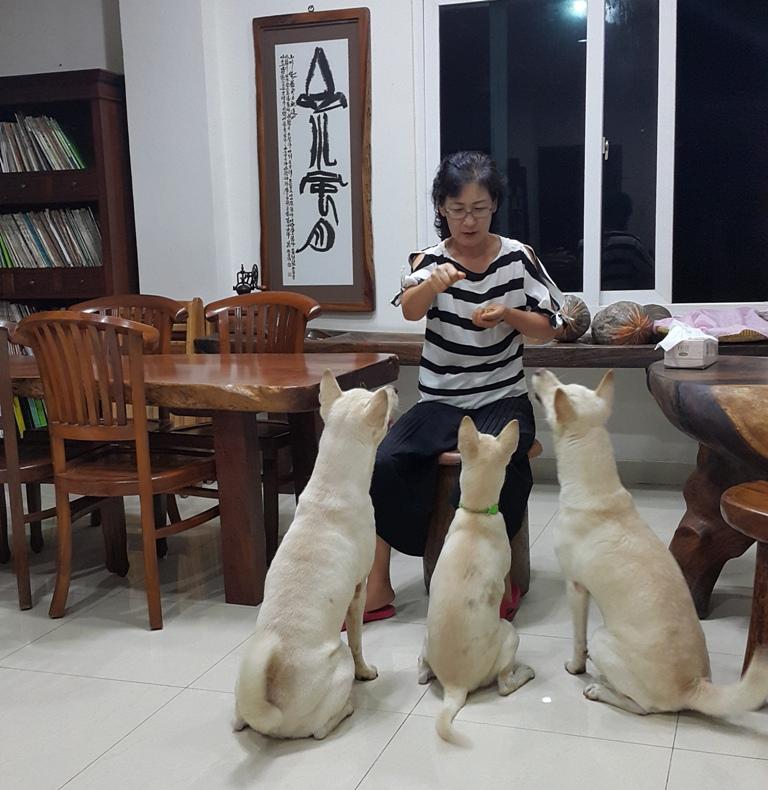 아내는 먹이를 주면서 훈시를 한다. 그러나 얌전한 모습은 그때뿐