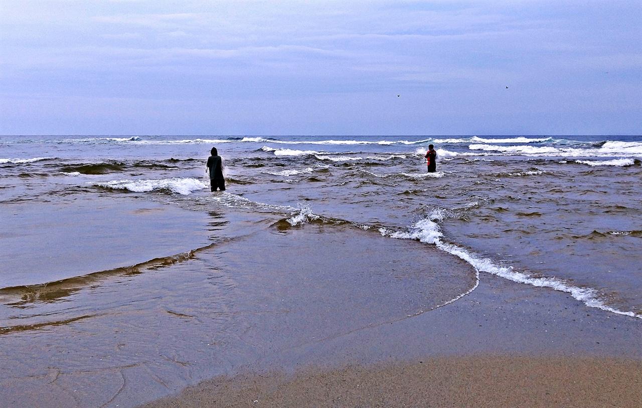 남대천 남대천의 물(오른쪽)이 흘러들어 동해바다와 만나면 바다는 크게 몸을 뒤척여 받아들인다. 이곳에서 연어는 며칠간의 민물에 적응하는 시간을 가진 다음 남대천으로 들어서 산란을 위해 다시 한 번 여정을 시작한다.