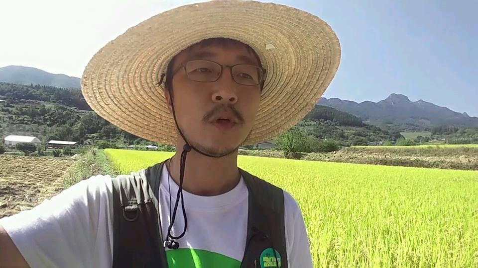 황금들판의 쌀 농민에게 저 누런 벼들은 얼마나 자랑스럽고 뿌듯할까.