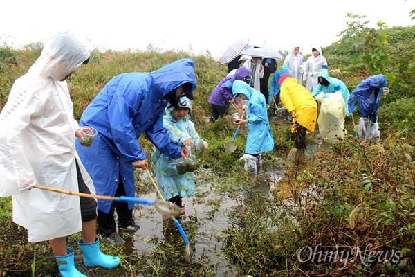 16일 오후 창녕 도천면 송진리 낙동강에서 열린 '생물다양성 증진을 위한 낙동강 생물시민대탐사' 행사에서 참석자들이 수서생물을 채집하고 있다.