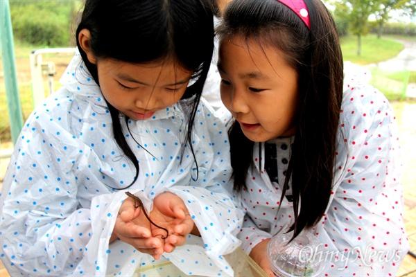 16일 오후 창녕 도천면 송진리 낙동강에서 열린 '생물다양성 증진을 위한 낙동강 생물시민대탐사' 행사에서 어린이들이 채집해 온 장지뱀을 살펴보고 있다.