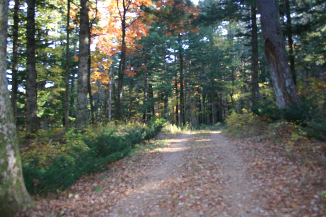 극락(지장암 수목장)으로 가는 길
