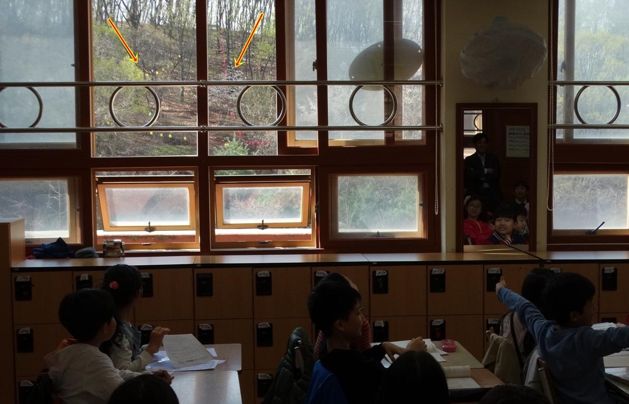 지곡초등학교 교실 바로 곁에 숲이 잘릴 위기에 놓여있다. 저 숲의 나무들을 자르고 산을 깎아내고 건물을 짓는 1년여동안 수업이 제대로 진행될 수 있으며, 어린 학생들이 받을 상처는 누가 책임질 것인가?