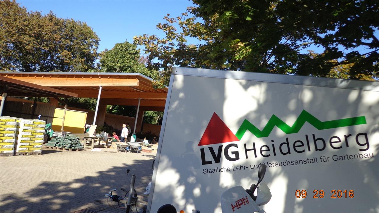하이델베르크  독일 하이델베르크 LVG원예시험연구소에 실습하고 있는 농업학교 학생들