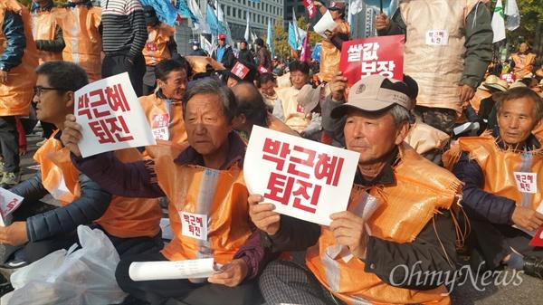 쌀 부대 찢어 입고, 농민들 박근혜 퇴진하라!