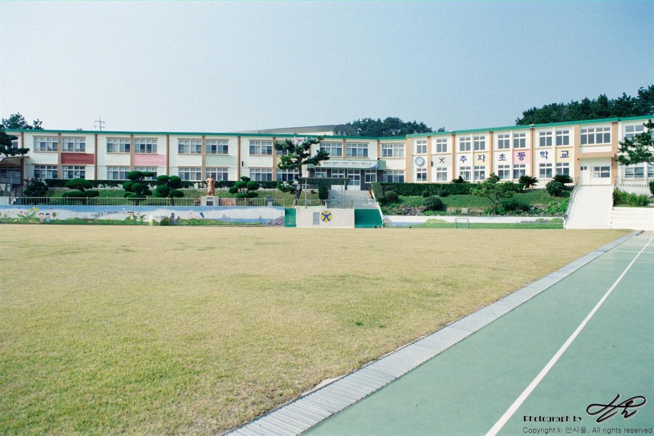 추자초등학교 35mm네거티브필름(프로이미지). 신양분교의 본교가 되는 추자초등학교