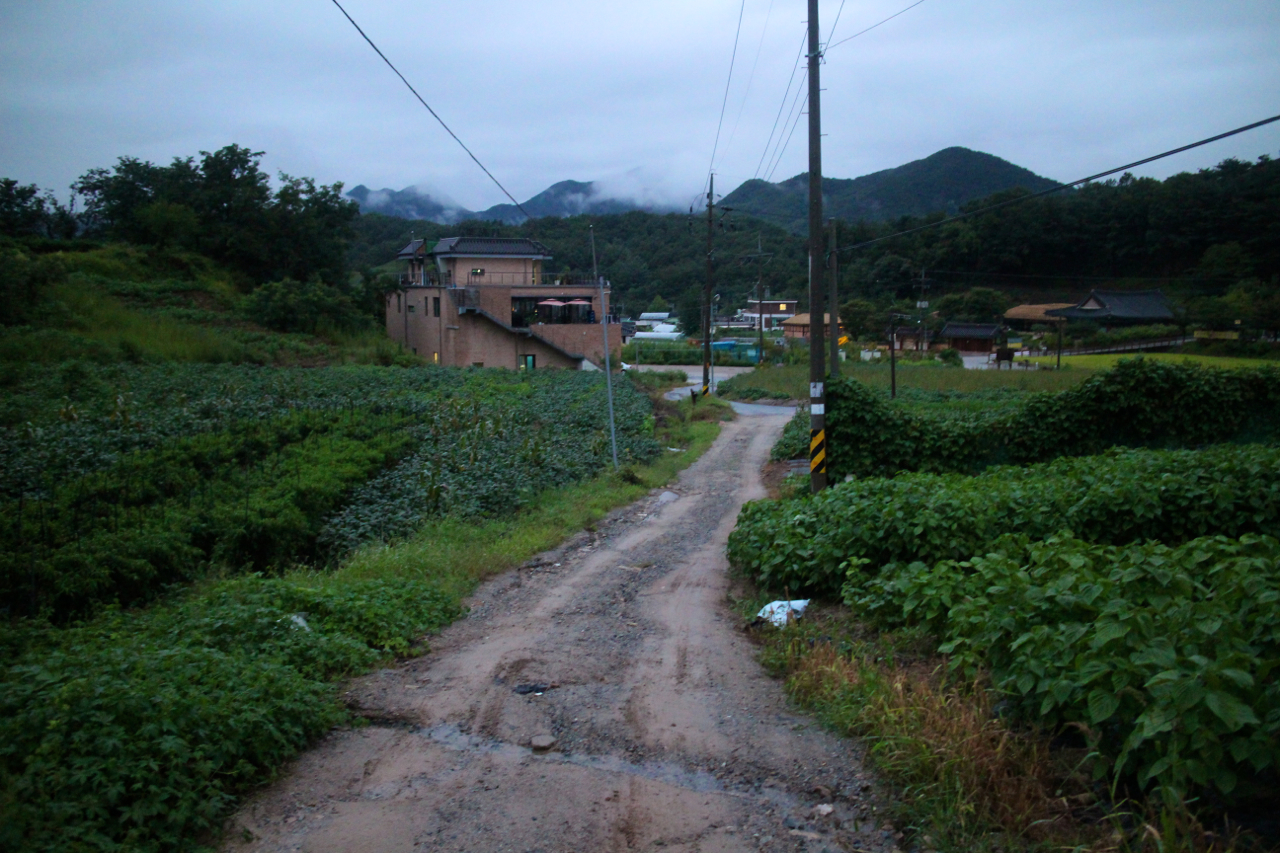실레마을. 걷기 좋은 마을이다.
