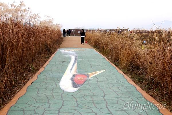 최근 철새도래지인 창원 주남저수지 둑길에 재두루미 그림을 그려 넣은 포토존이 만들어져 논란을 빚고 있다.
