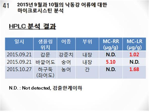 """""""낙동강 어류에서 독성물질 농축 확인"""""""