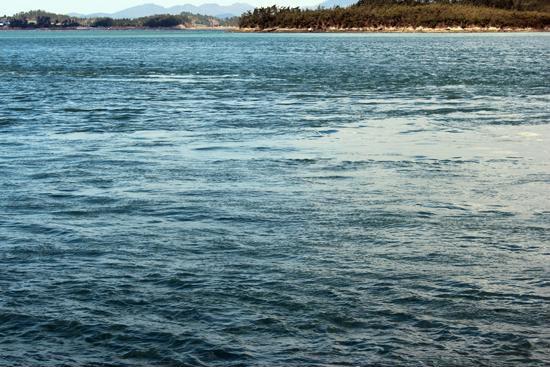 녹진항에서 보는 울돌목의 거센 물살. 바다 가운데서 회오리를 일으키기 때문에 물살의 빛깔과 방향이 달라보이는 것이 눈으로도 확인된다.