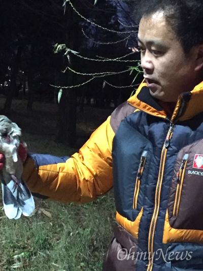 22일 오후 창원 가음정공원에서 가슴에 상처를 입은 멧비둘기가 발견되어 경남야생동물보호협회 회원이 구조하고 있다.