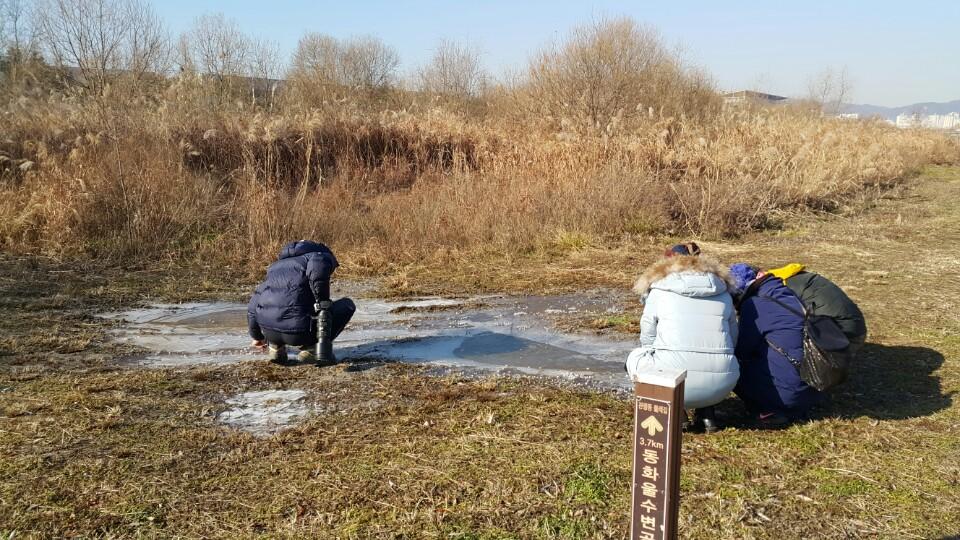 얼음꽃을 찍는 참가자들 참 작은 것에 감동을 느끼며 사진을 찍습니다.