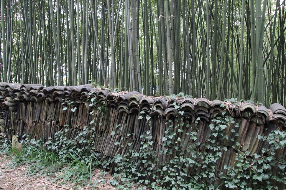 대나무 숲과 기와 담장길이 퍽 이채롭다.