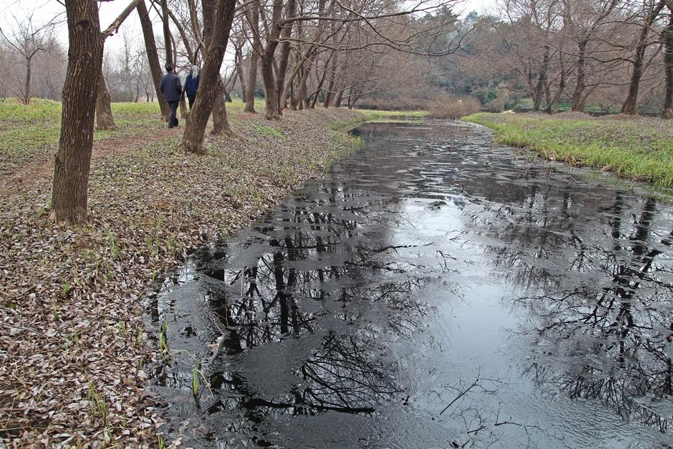 """""""한국정원은 자연을 훼손하지 않고 자연 속으로 들어가서 숨 쉬는 거예요. """""""