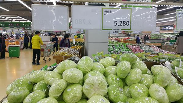 9일 양재동 하나로마트의 양배추 한 통 가격은 5280원이다.