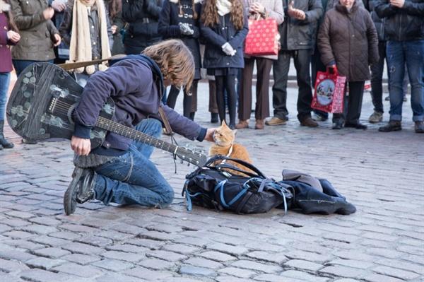 영화 <내 어깨 위 고양이, 밥>의 스틸. 영국 런던의 명소 코벤트 가든에서 밥과 함께 버스킹을 하는 제임스의 모습. 혼자일 때와는 달리, 수많은 사람들의 호응을 얻어 대성공을 거둔다.