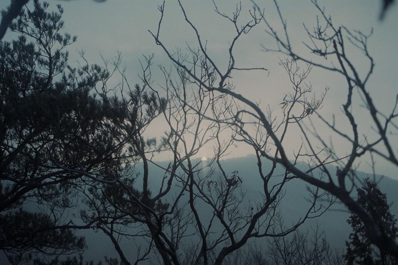 새해의 태양 새해의 태양. 산중이라 8시 반이 넘어서야 해의 모습을 볼 수 있었다.(Netura1600)