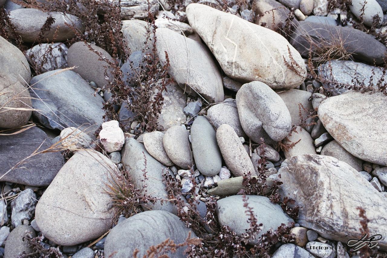 인편구조 동강 유역의 크고 작은 돌들이 서로 몸을 포개어 낮게 누워있다.(Premium400)