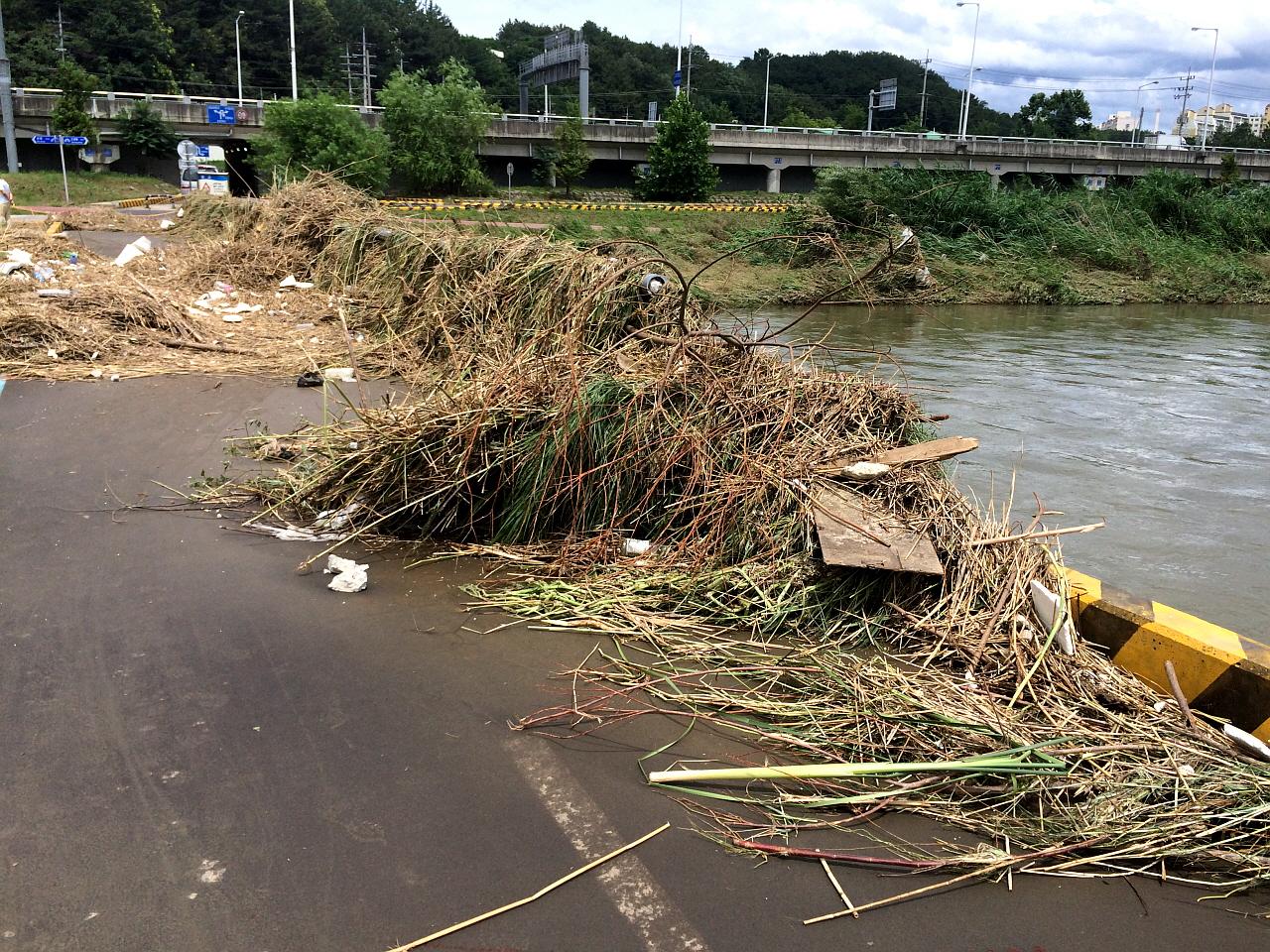 지난해 7월 하천에 설치한 다리 펜스에 걸린 쓰레기들 통수단면을 저해하는 시설물이 모습, 실제로 부서진 난간을 현재 복구하고 있다.