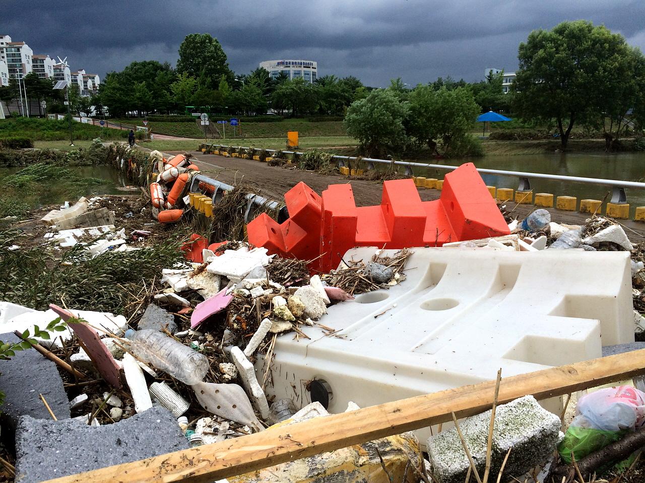 하천 난간에 설치된 쓰레기들 버드나무가 문제가 아니라 시설물이 문제가 되는 이유를 보여준다.