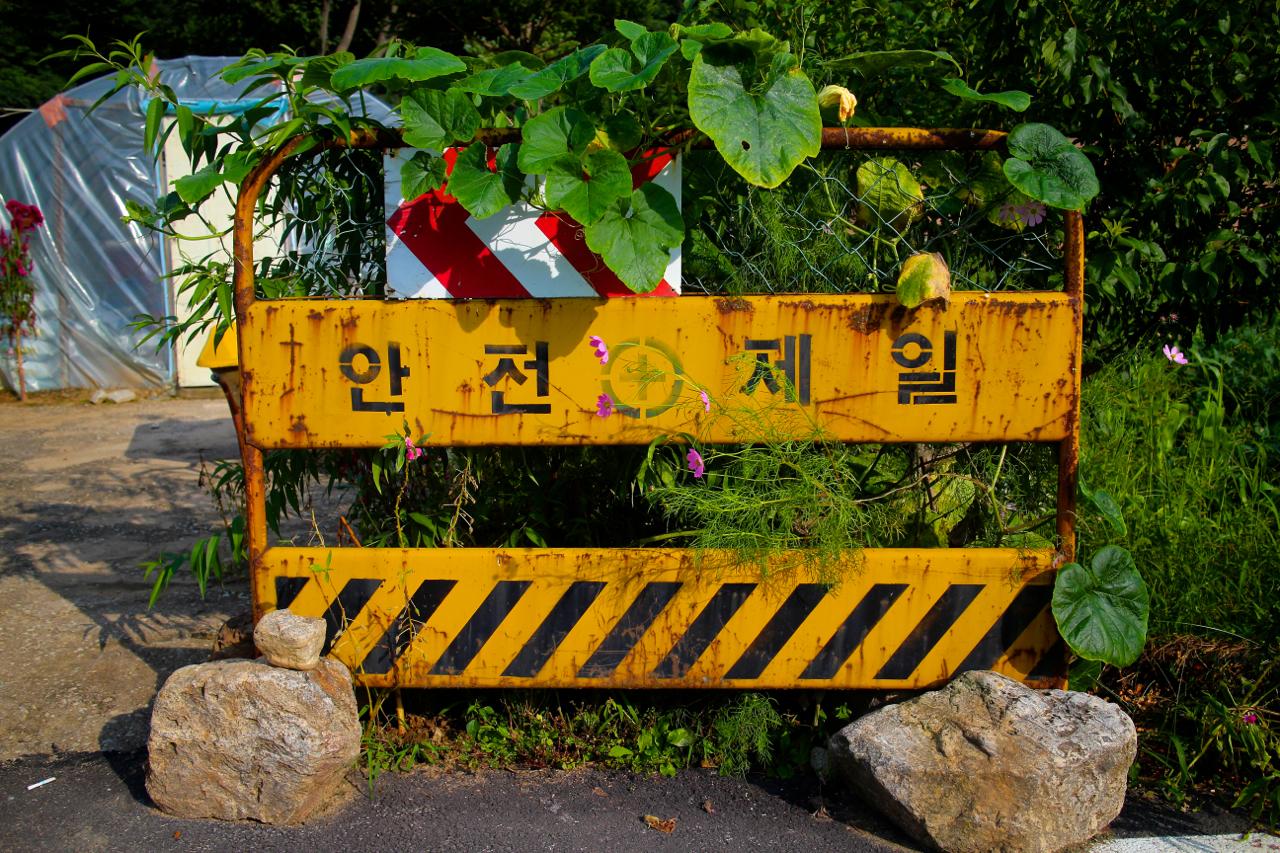 용암리. 용이 승천했다는 마을에서도 안전이 제일이다.