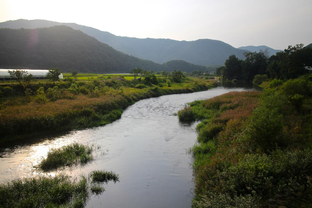 홍천강에서 흘러나온 양덕원천. 해가진다.