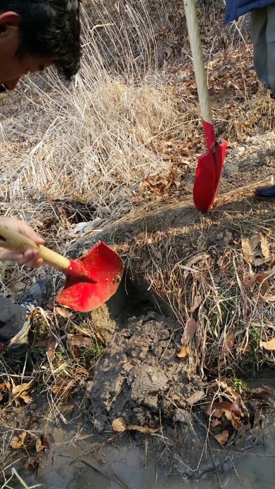 둑에 구멍을 찾고 부수는 모습 구멍을 찾아 다시 메우기 위해 부수고 있다.