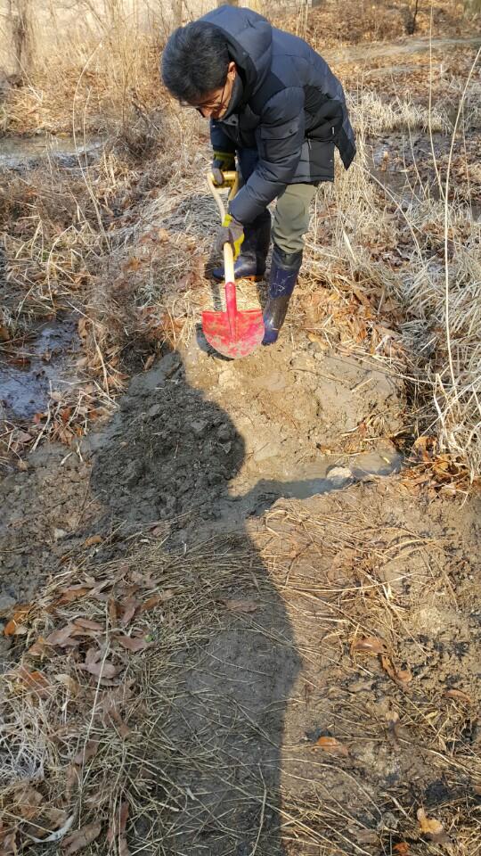 구멍을 메우고 다시 둑을 쌓고 있다.  다시 쌓은 둑의 모습