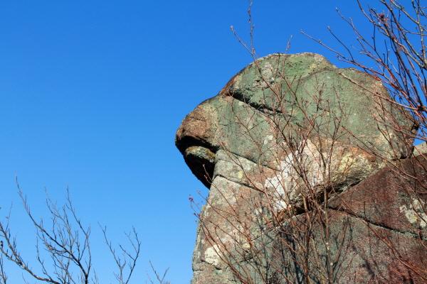 산청 꽃봉산 전망대 근처 충직한 개를 닮은 바위