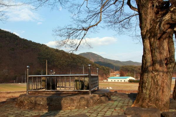 고성군 마암면 마을 회관 앞에 투박한 석마(石馬) 두 마리가 느티나무 아래 있다