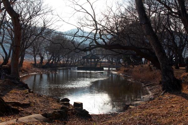 아름다운 마을 숲으로 선정된 고성군 장산숲