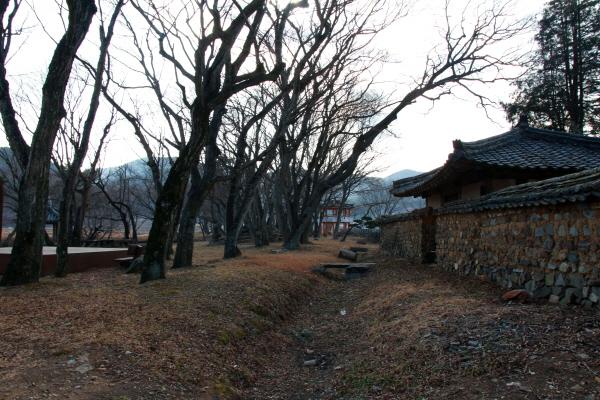 고성 장산숲에서 잠시 눈을 감고 숲을 느껴보는 지금이 좋다. 스쳐 지나가는 바람마저 달달하다.