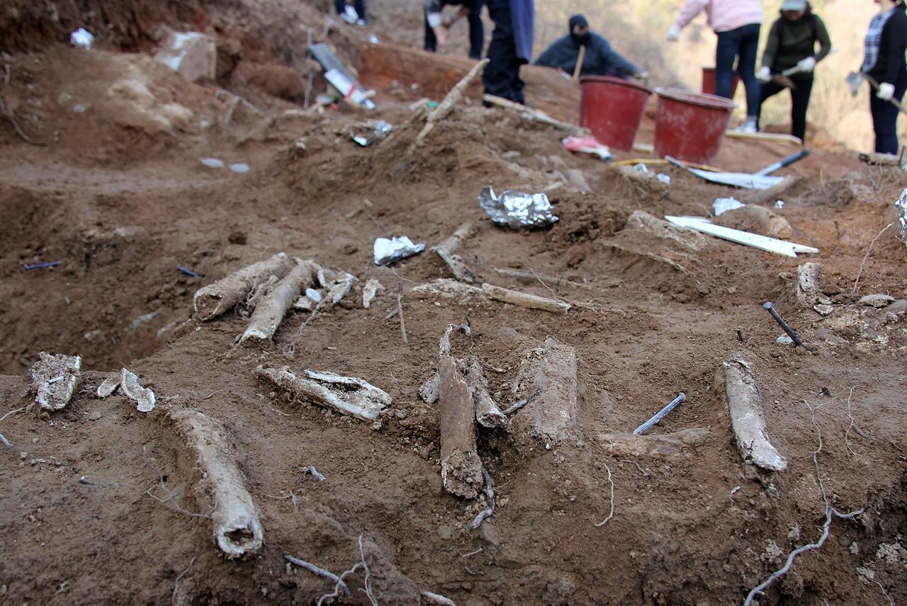 25일, 경남 진주 용산 고개에서 드러난 민간인 희생자 유해. 이 곳에서는 1950년 7월 진주지역 보도연맹원과 진주형무소 수감 재소자가 살해돼 암매장됐다.