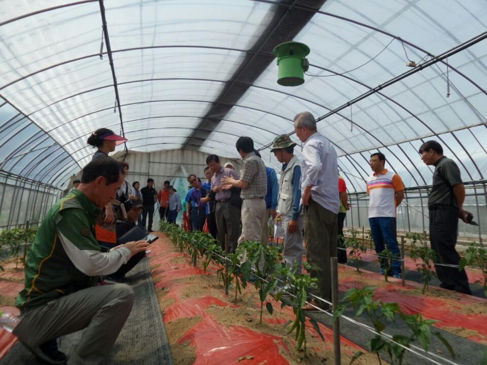 보령시 귀농귀촌인 현장교육 귀농귀촌인들이 작물재배와 관련하여 교육을 받고 있다
