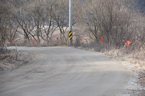 빨리 달릴 이유가 없는 이 길을 포장을 하려 한다. 민속마을로 들어가는 초입인데 비포장으로 두는 것이 더 아릅답다.