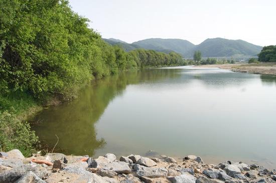 경상북도의 재해예방사업 전의 내성천의 모습