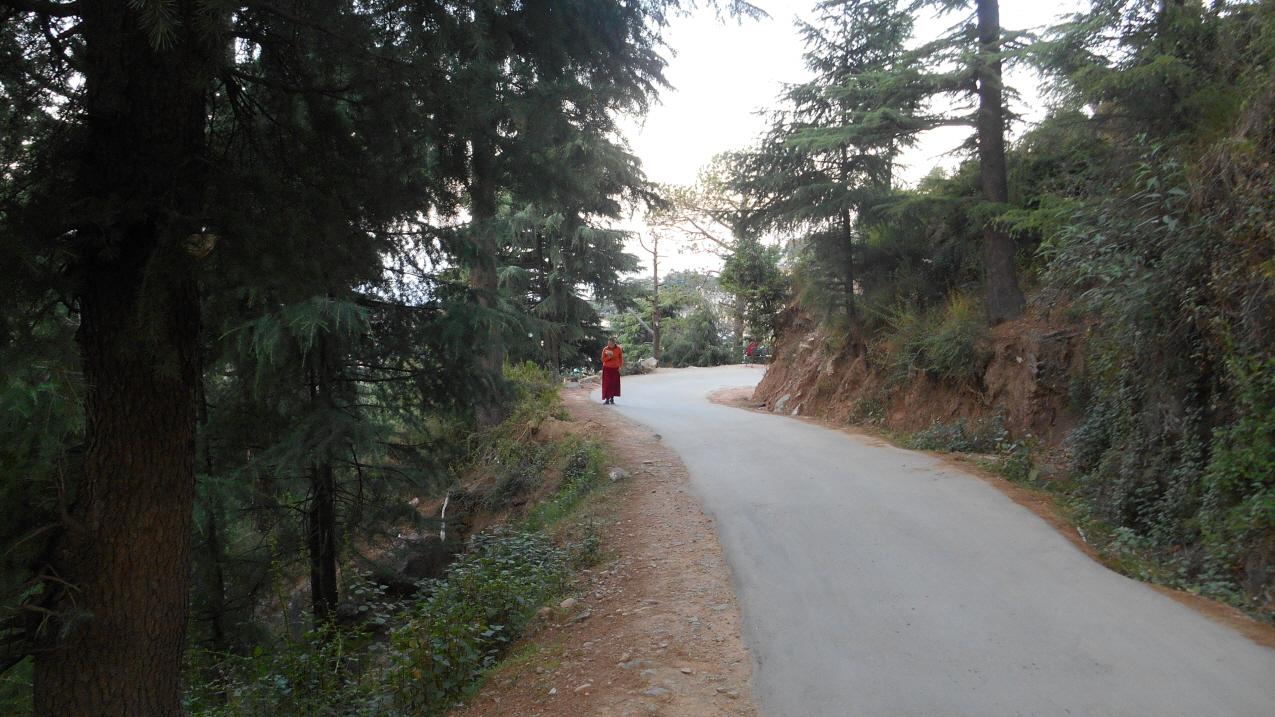 이른 아침 산책길에서 경전을 외우고 있는 티베트 라마승