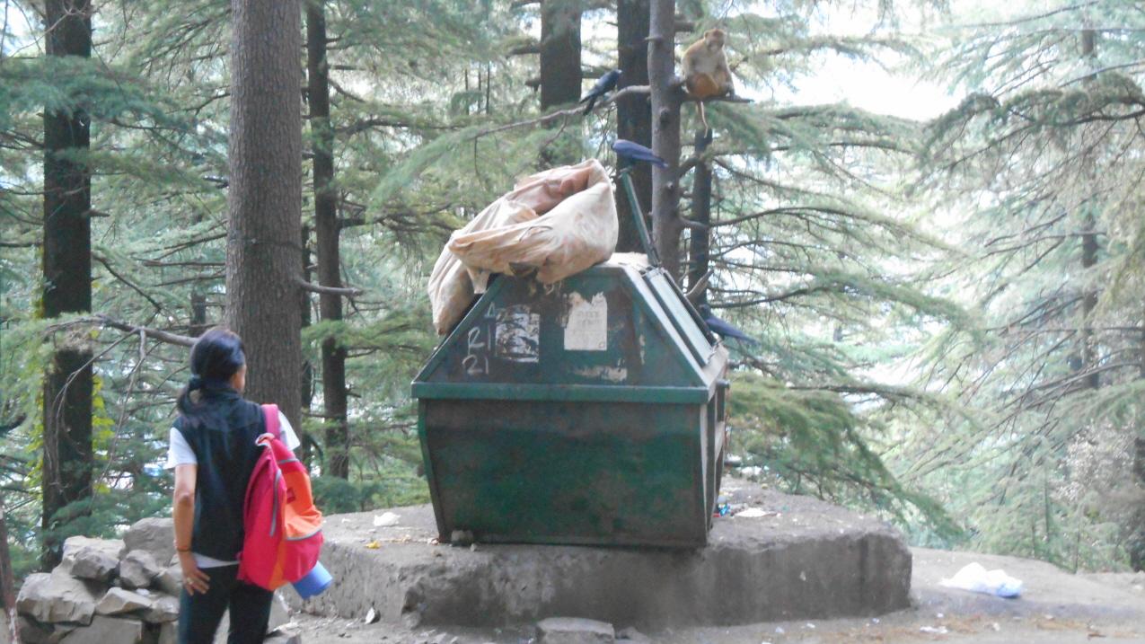 쓰레기통을 앞에 놓고 먹이 쟁탈전을 벌이고 있는 원숭이와 까마귀