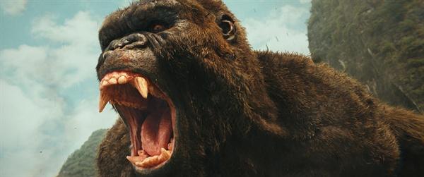 캐릭터를 부여받지 못했기에 그저그런 괴수로만 보이는 <콩: 스컬 아일랜드>에서의 킹콩.