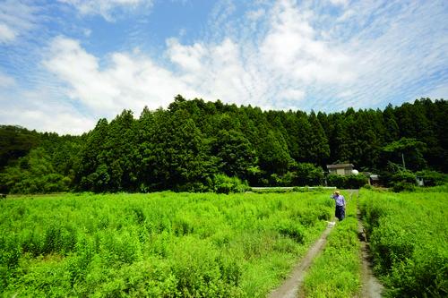 후쿠시마에서 '남은 짐승'하고 조용히 사는 한 사람