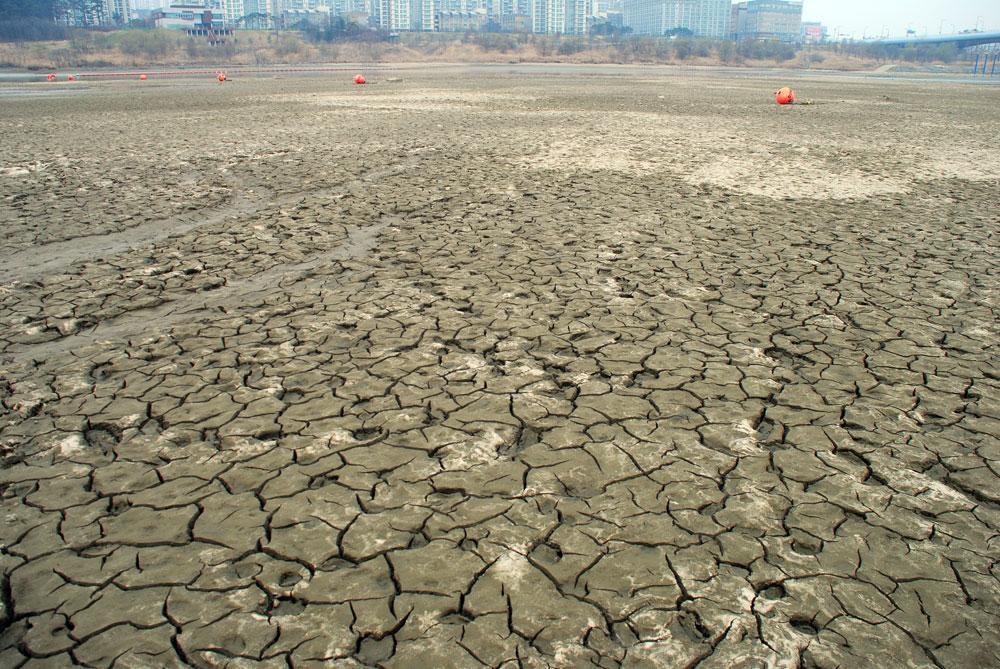 가뭄에 드러난 논바닥처럼 강바닥이 쩍쩍 갈라져 있다.